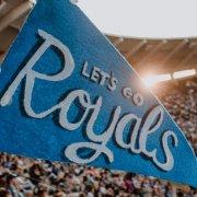 zastava-plava-na-stadionu
